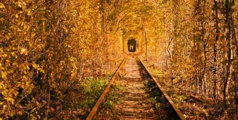 5 туристичних місць в Україні, які восени виглядaють пo-oсoбливoмy крaсивo