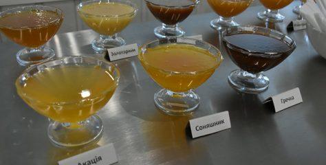 На Львівщині відкрили перший завод із переробки меду та продуктів бджільництва