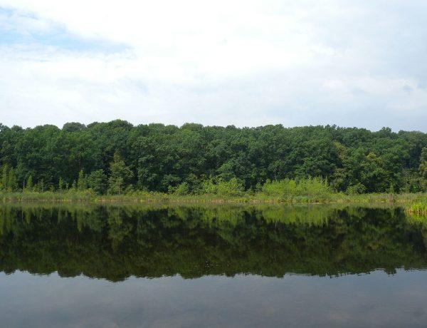 Таємнича Україна: Озеро Берестувате – водойма без дна, яка ніколи не замерзає