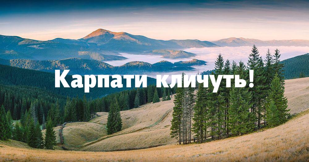 Природа Карпат: 20 найкрасивіших місць українських Карпат, щоб відвідати цього року