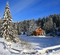 7 недорогих варіантів відпочинку в Карпатах