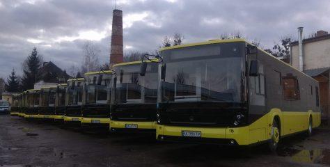 Львівські депутати підтримали пропозицію запустити великі автобуси на маршрут №20