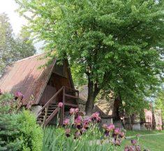 ТОП-5 локацій біля Львова, де можна добре відпочити на природі